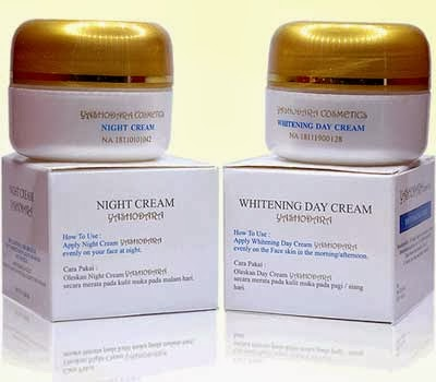 Cream Pemutih Wajah Yashodara Night Cream