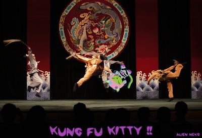 Alien Neko Doing Kung Fu in Taiwan