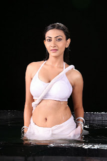 Actress Neelam Upadhyay  Pictures in Wet White Saree  0008.jpg