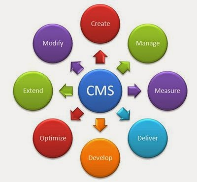 Structure of CMS