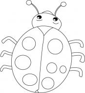 Ladybug Clip Art :: Line Drawing :: Outline