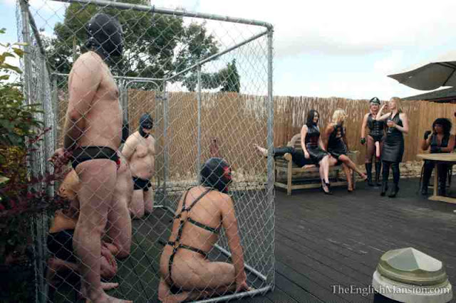 english mansion, male slaves in a cages, mistresses watching, femdom, bdsm