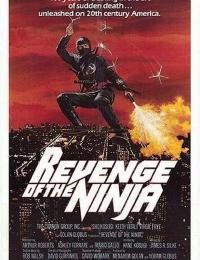Revenge of the Ninja | Bmovies