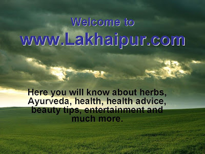 Welcome to Lakhaipur
