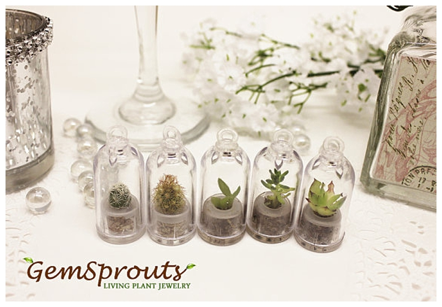 ... wedding favour ideas ? ? Or how about eco-friendly wedding ideas