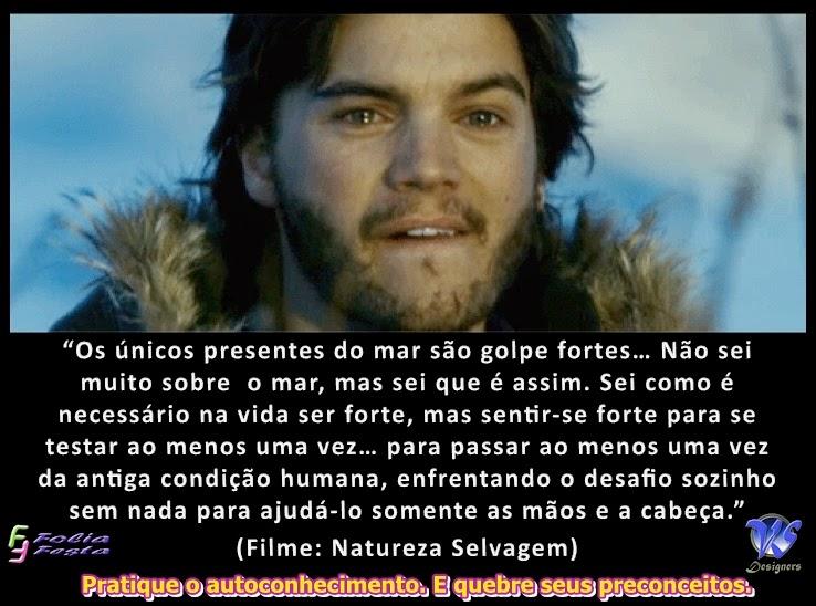 Mensagem do Filme Na Natureza Selvagem