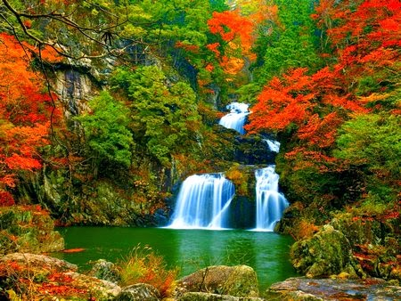 Hình ảnh đẹp mùa thu khoe sắc vàng
