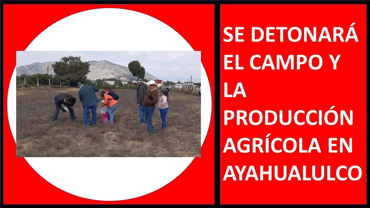 PRODUCCIÓN AGRÍCOLA EN AYAHUALULCO