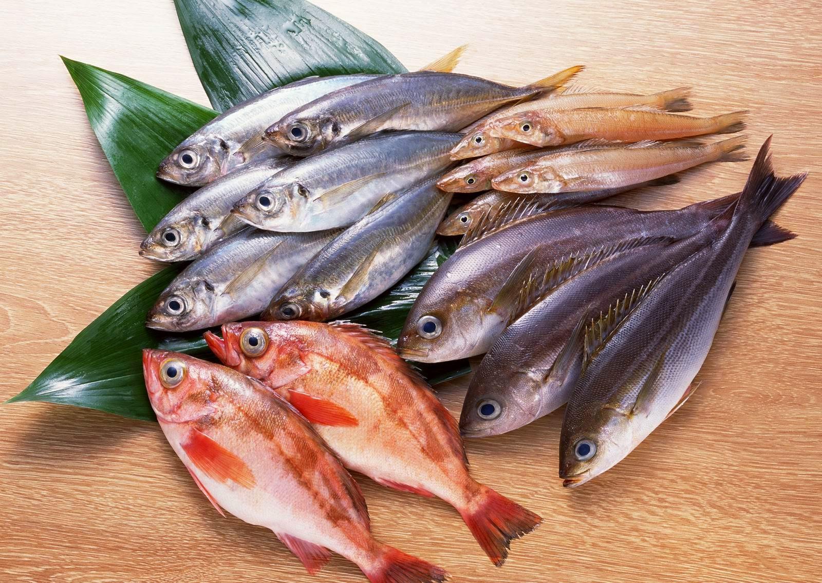 Donmuş Balık Nasıl Hızlı Şekilde Çözülür