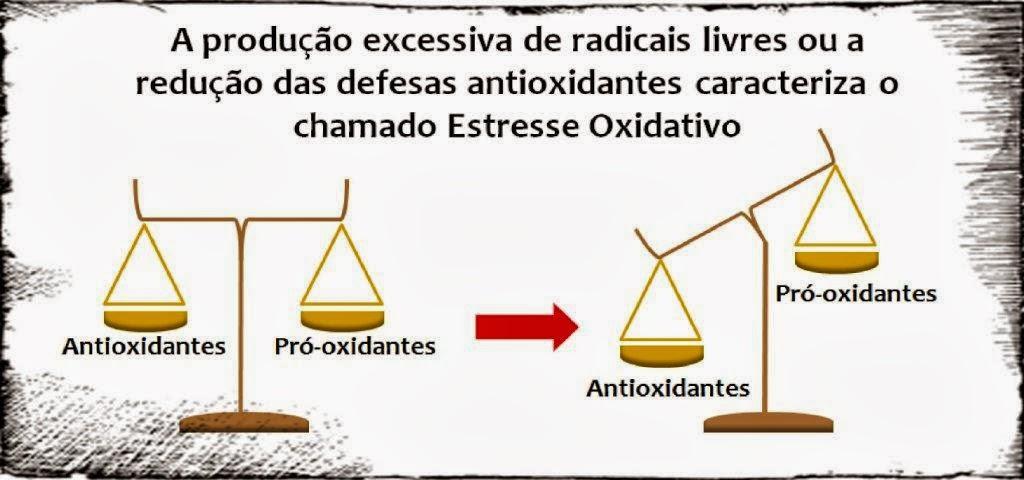 Resultado de imagem para estresse oxidativo