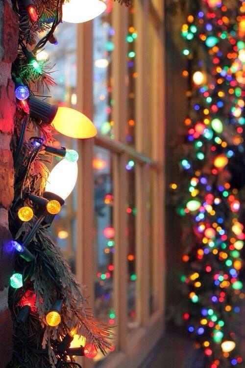 christmas, trees, lights, snow, tag