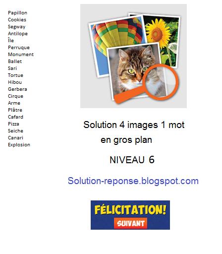 Solution 4 Images 1 Mot - Gros Plan Niveau 6