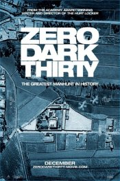 Download Zero Dark Thirty (2012) Dvdrip
