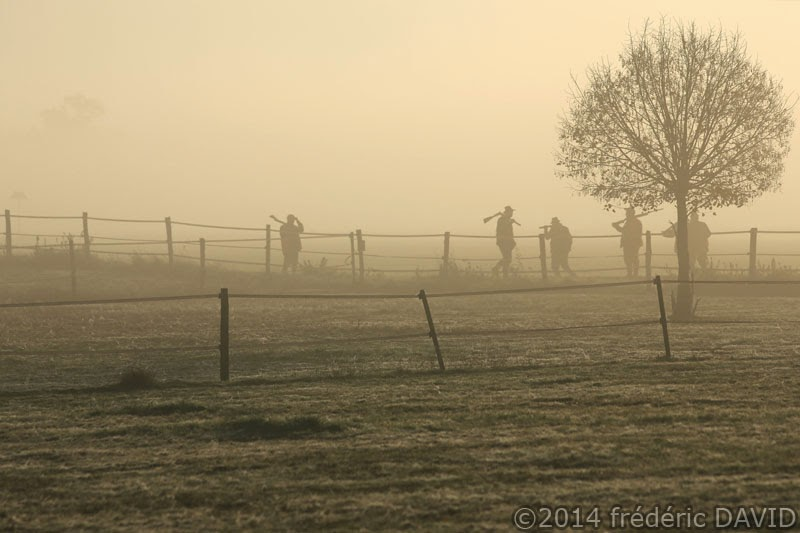 silhouettes brume chasseurs arbre Seine-et-Marne