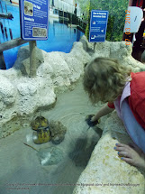 Tulsa Zoo and Aquarium
