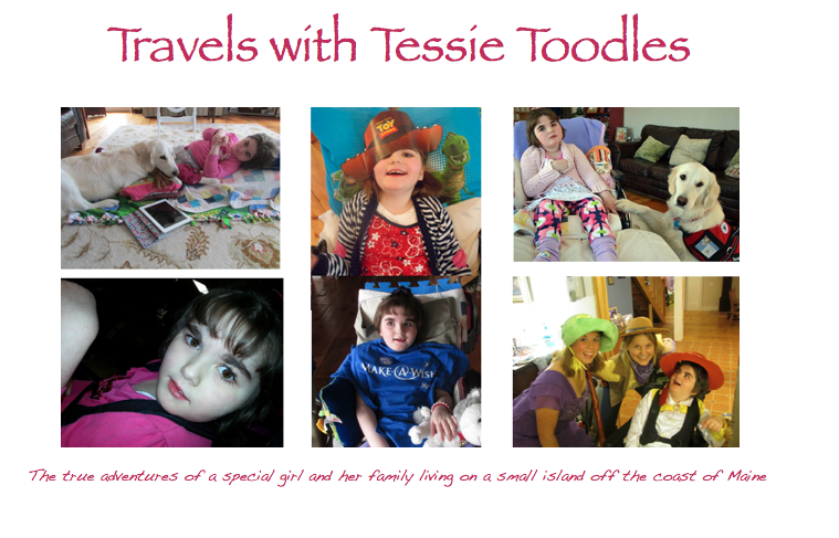 Travels with Tessietoodles