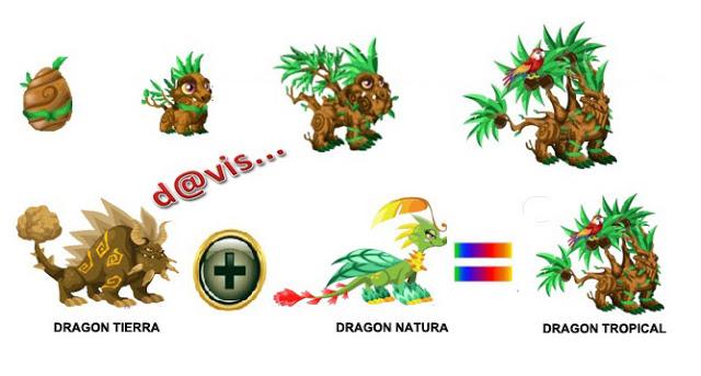 los Dragones Tropicales les gusta bailar toda la noche, realizar