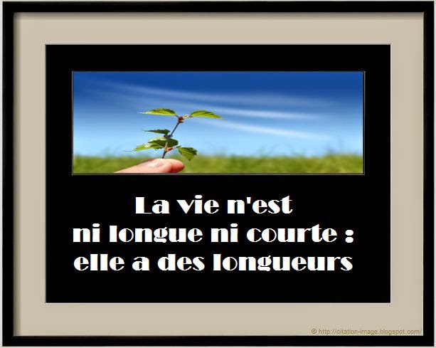 Citation sur la vie en rose en image