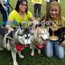 Ustaz Kazim Jawab Isu Program Pegang Anjing Mendapat 8 107 Shares Di Facebook
