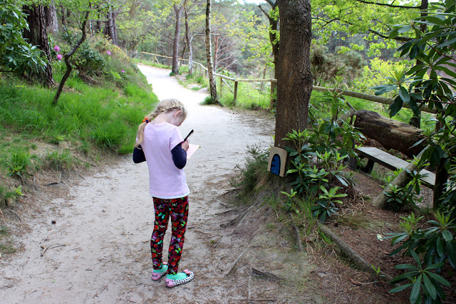 busy-girl, finding-treasures, todaymyway.com, countryside, forest-in-the-spring