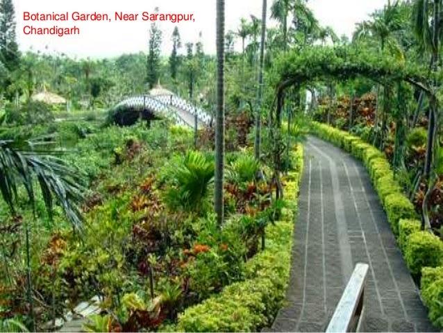 Garden, Sarangpur and Chandigarh