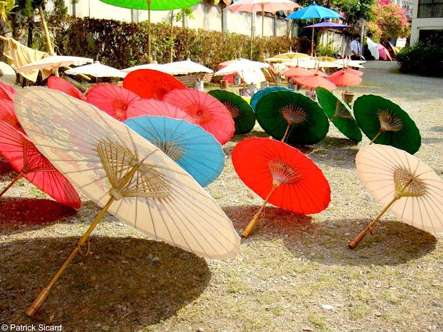 Umbrellas in Bo Sang