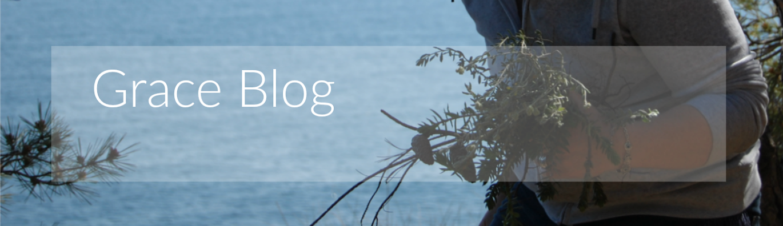Grace Blog