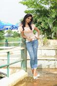 Cute shanvi glamorous photos-thumbnail-5