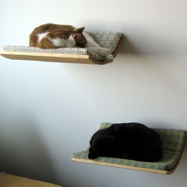 Comfort Living Furniture For Cats