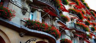 façade maison fleurie