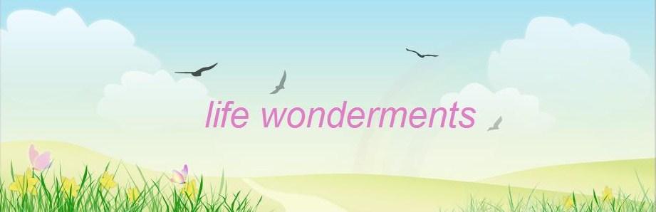 Life Wonderments