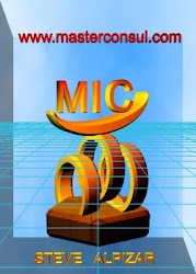Master International Consulting