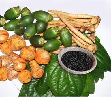 Obat Herbal Untuk Mengatasi Penyakit Ayam Ayam Kampung ...