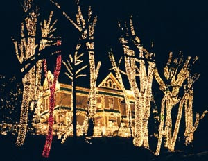 All of the Lights: Places to light up your holidays in Portland ...