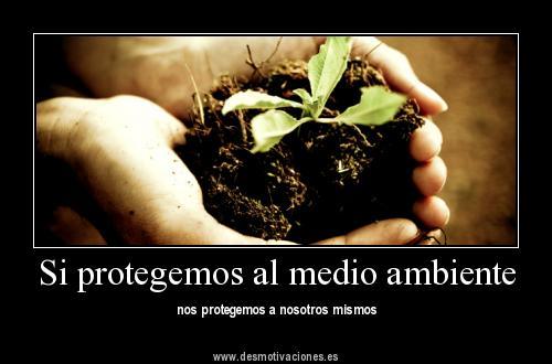 Publicado por Ana Garcia Geng en 18:25