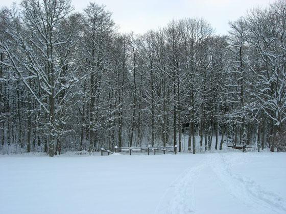 Neve a Bockeboda