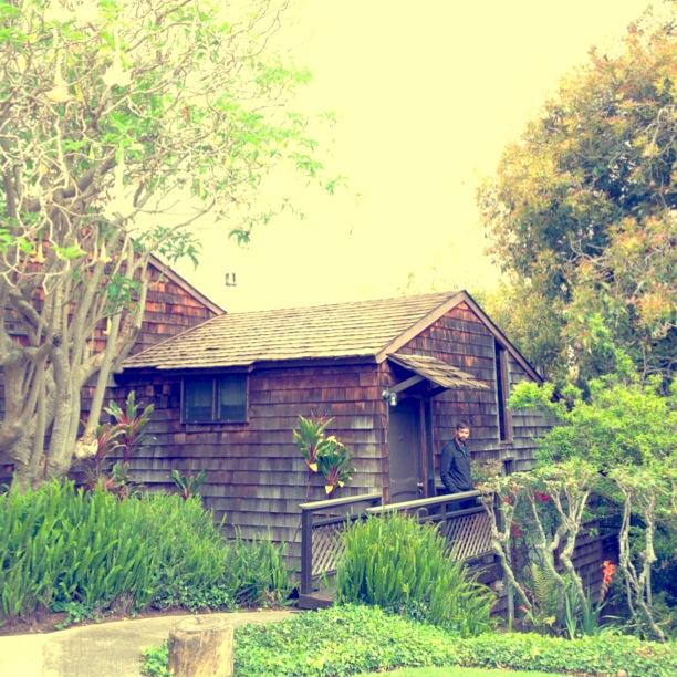 Kula Lodge Maui | www.floralsandplaid.com