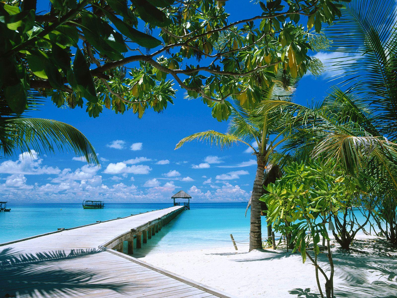 Hd Beach Wallpaper Nature Desktop 3d Spring Winter Tropical