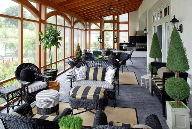 indoor plants and trees