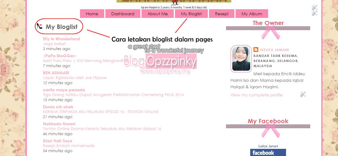 Cara Letakkan Bloglist dalam Pages