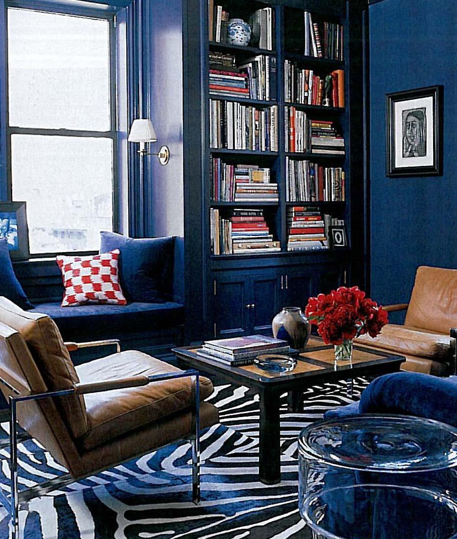 Zebra Print Living Room The Transformative Power Of A Zebra Print Rug Design Seeker