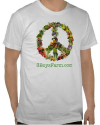 "<a href=""http://www.zazzle.com/3boysfarm*"">3 Boys Farm Swag</a>"
