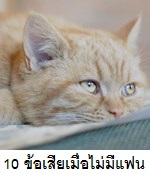 10 ข้อเสียของการไม่มีแฟน