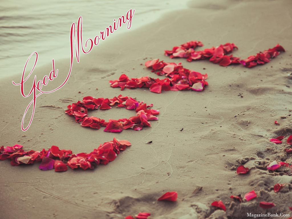 Hd Gud Mrng My Love Images & Pictures - Becuo