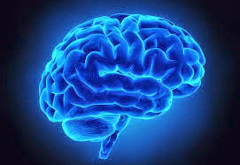 Where does a memory begin?   Alzheimer's Reading Room