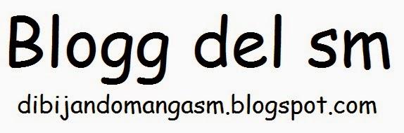 Blogg del SM