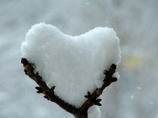 el amor en la naturaleza
