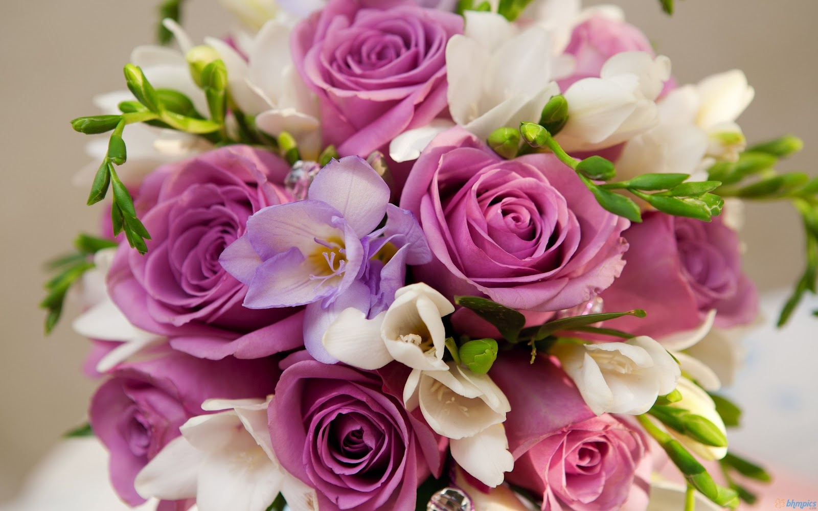 Free Best Pictures: Beautiful Purple White Flowers Bouquet ...