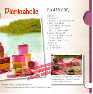 TupperwareRaya-Katalog Tupperware Promo April 2013, Picnicaholic