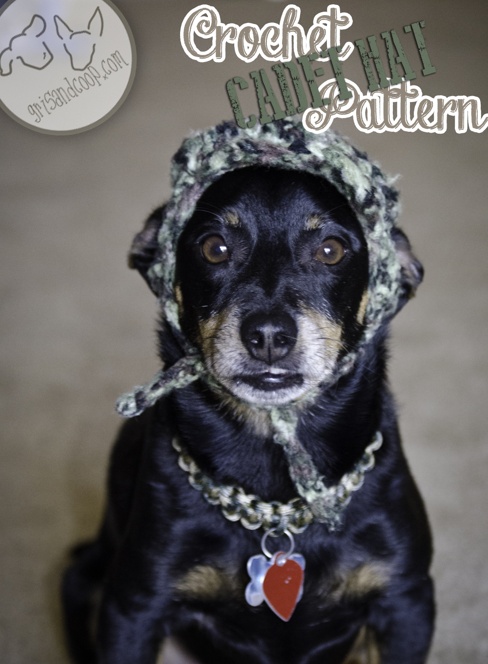 Free Crochet Patterns Hats For Dogs ~ Dancox for .